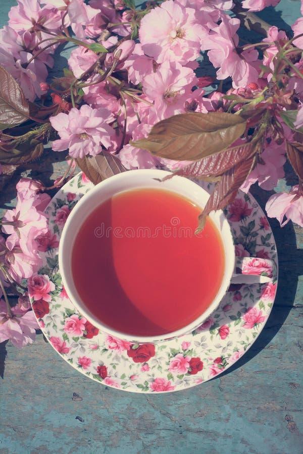 Bonita, inglês, a xícara de chá do vintage com a árvore de cereja japonesa floresce, fecha-se acima imagens de stock royalty free