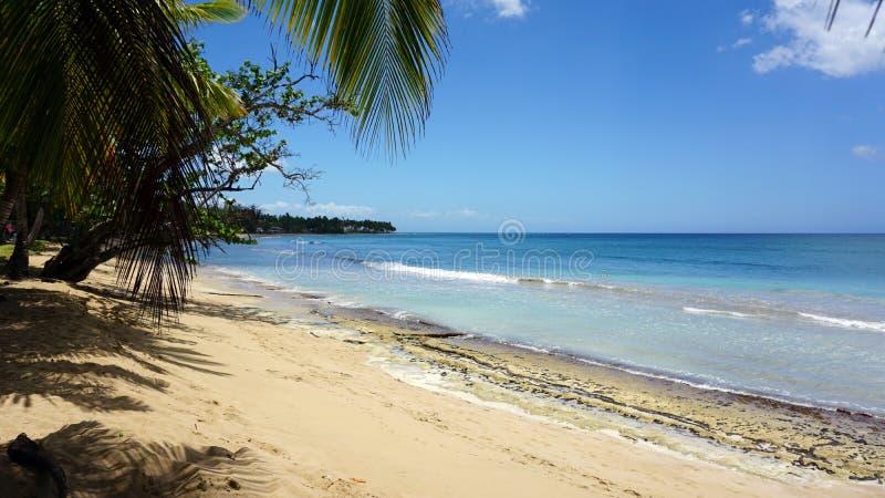 bonita playa стоковые изображения rf
