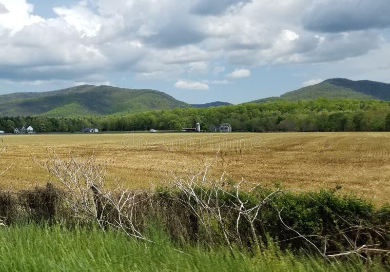 Bonito abra o campo com casa da exploração agrícola fotos de stock