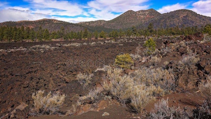 Bonito Lava Flow au monument national de cratère de coucher du soleil photo stock