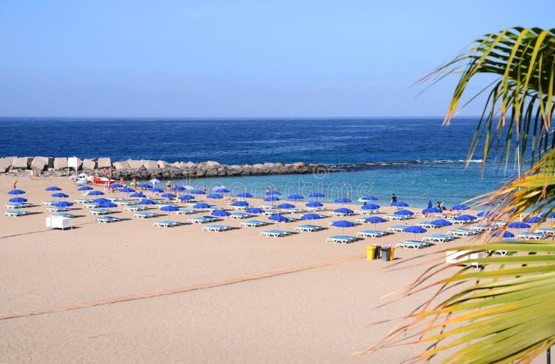 Bonito Playa de las Vista em Los Cristianos em Tenerife imagens de stock