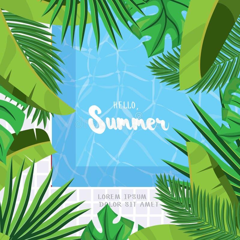 Bonjour, été Carte de voeux de vacances avec les palmettes tropicales illustration de vecteur