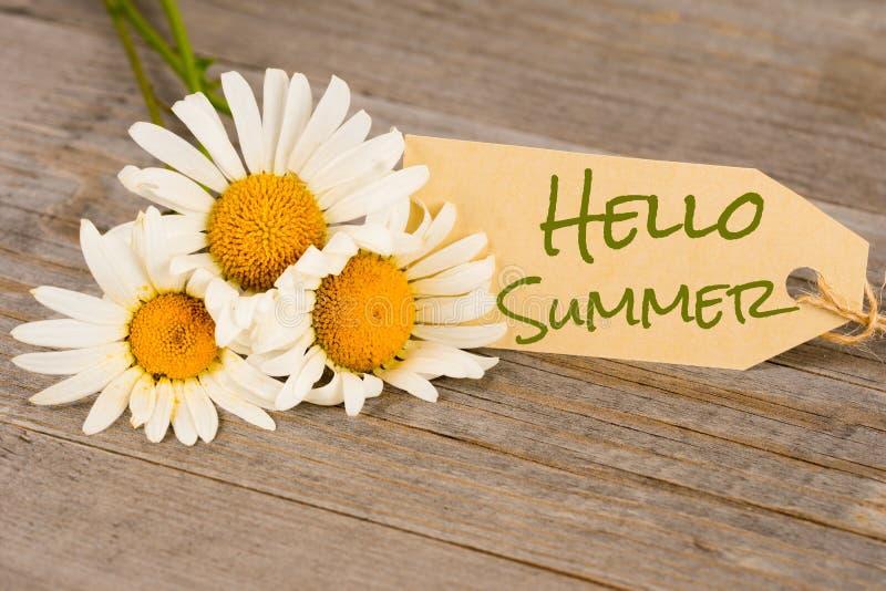 Bonjour été, fleurs de camomille sur les planches en bois photographie stock