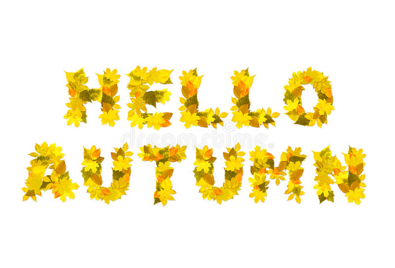 Bonjour automne photo stock
