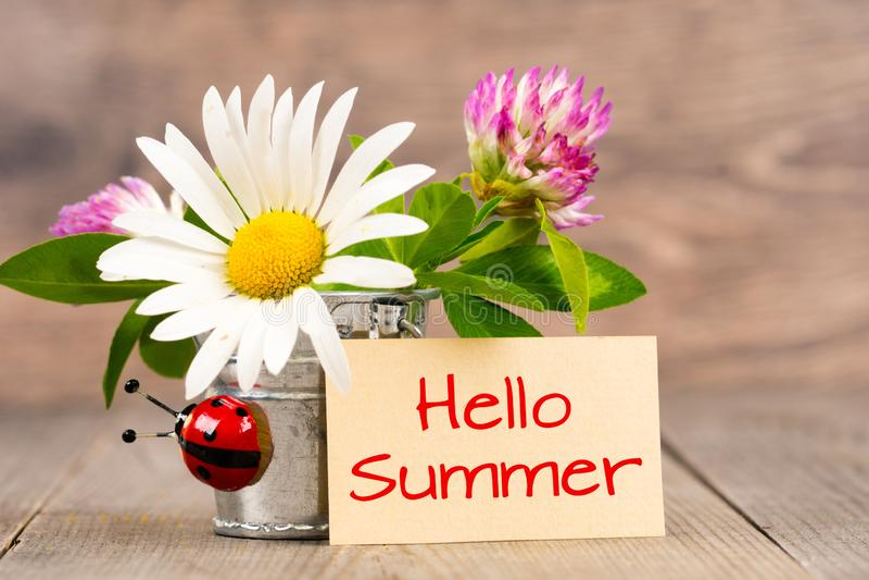 Bonjour bouquet d'été, de coccinelle et de fleurs sauvages dans le seau de fer-blanc sur la table en bois photographie stock libre de droits