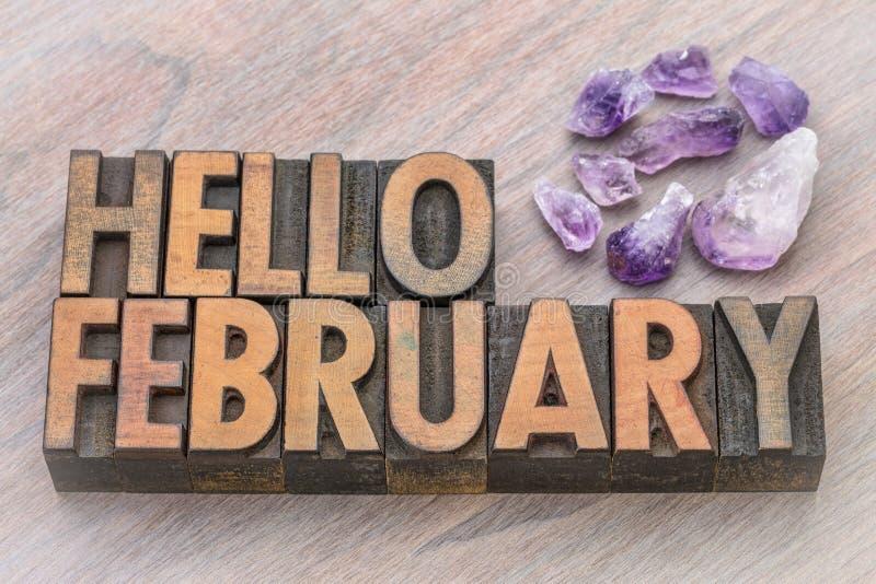 Bonjour février dans le type en bois de vintage photo libre de droits