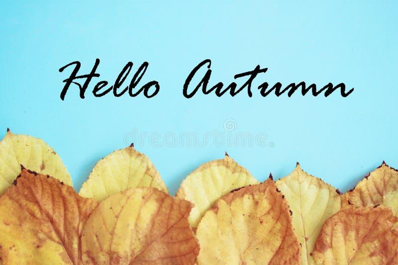 Bonjour feuilles de fond ou de carte d'automne photos libres de droits