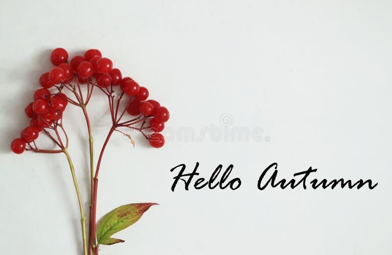 Bonjour feuilles de fond ou de carte d'automne photographie stock