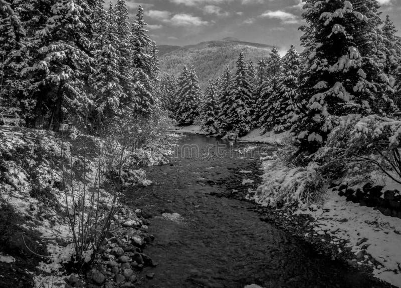 Bonjour hiver image stock