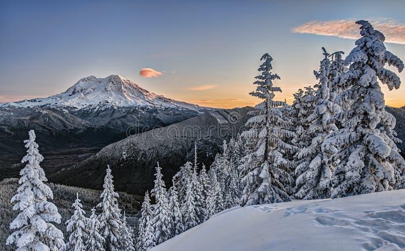 Bonjour, le mont Rainier images libres de droits