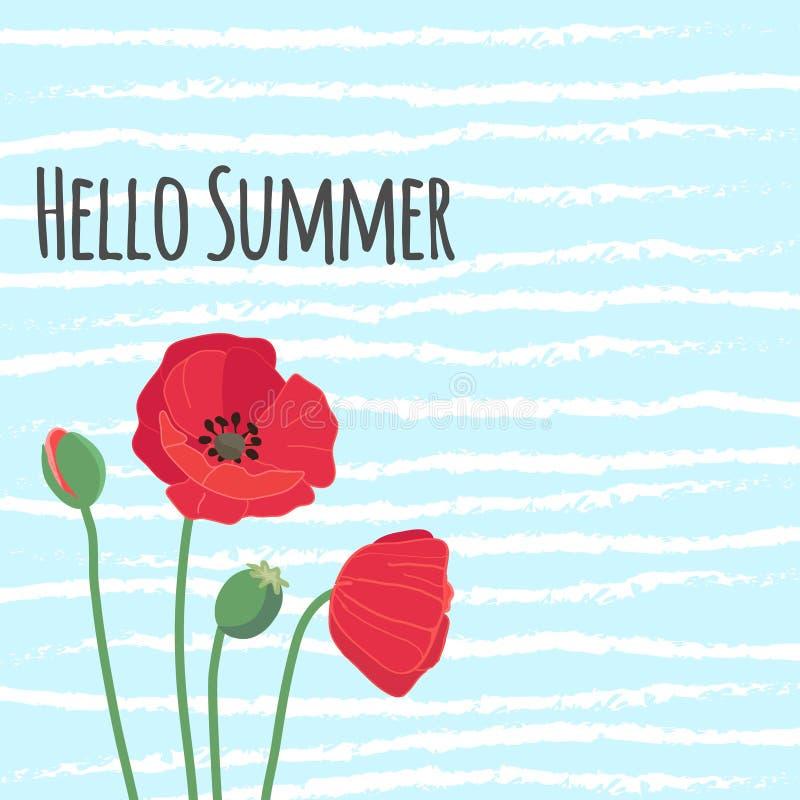 Bonjour le texte d'été avec le pavot de champ rouge coloré mignon fleurit dessus illustration stock