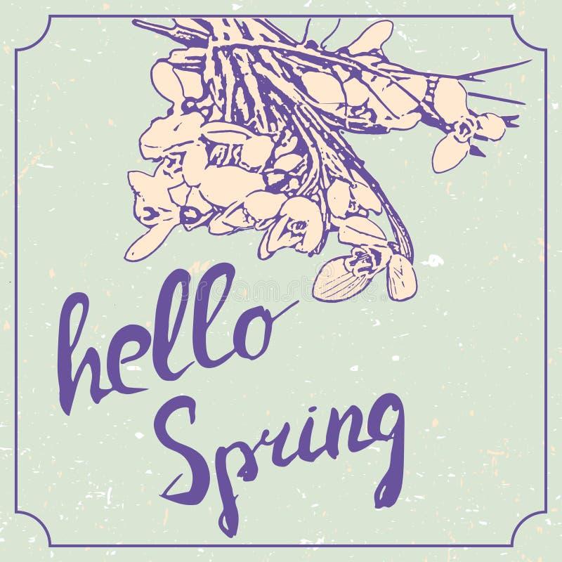 Bonjour lettrage tiré par la main de ressort avec des fleurs de perce-neige Calibre grunge de conception de mariage de vintage, i illustration stock