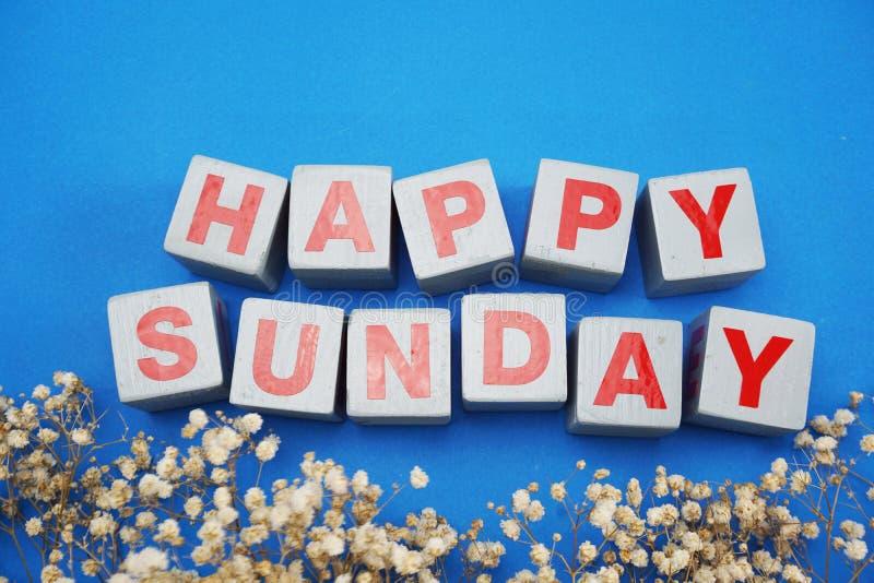 Bonjour lettres d'alphabet de mot de dimanche sur la vue supérieure en bois de table avec la décoration sèche de fleur photo libre de droits