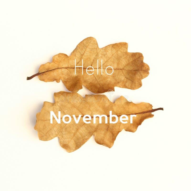 Bonjour novembre photo libre de droits