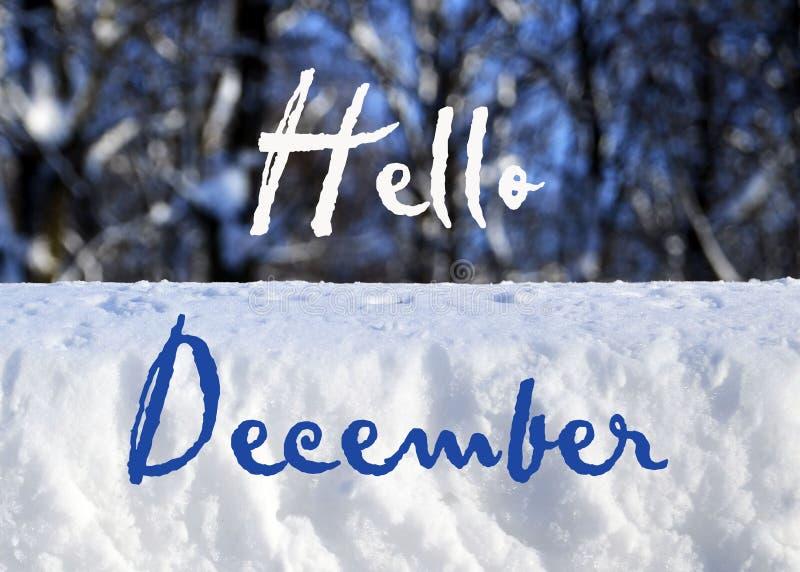 Bonjour texte de décembre sur une forêt neigeuse brouillée d'hiver et un fond naturel blanc de neige Concept d'hiver image libre de droits