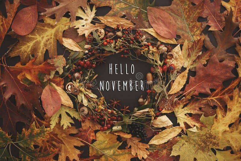 Bonjour texte de novembre sur la configuration d'appartement de guirlande d'automne La chute laisse le circl images stock