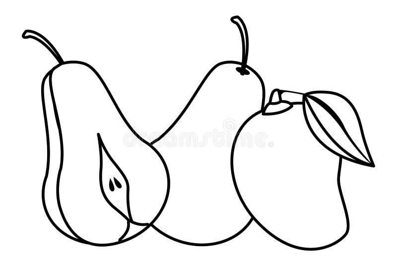 Bonkrety i mangowe wyśmienicie owoc w czarny i biały ilustracja wektor