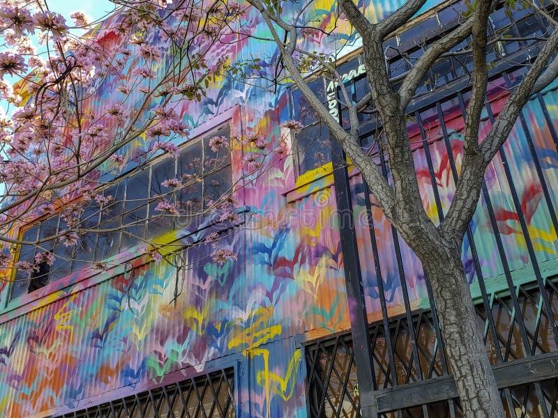Bonkrety okwitnięcia graffiti w los angeles sztukach Gromadzkich i drzewo obrazy royalty free