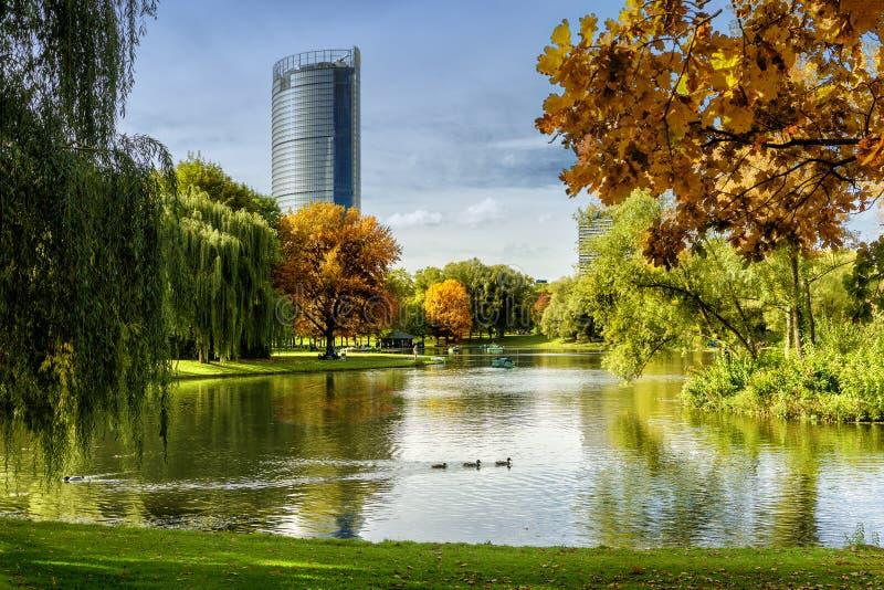 Bonn, Herbst in Rheinaue-Park lizenzfreie stockfotos