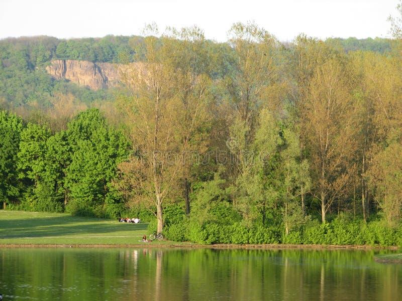 Bonn Rheinaue Germania fotografia stock
