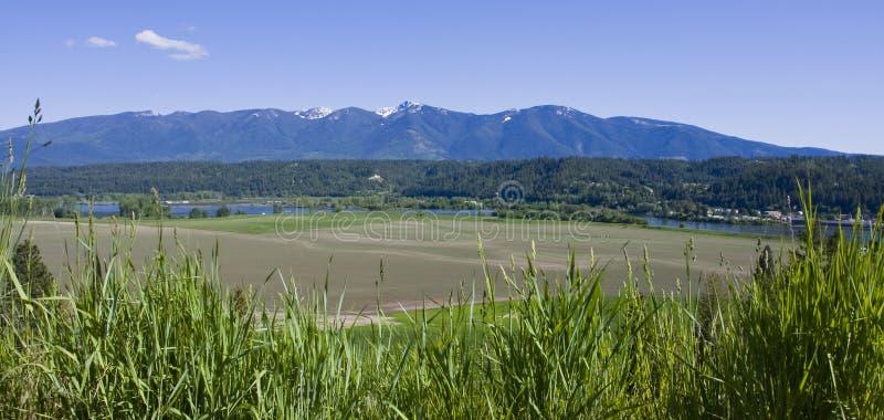bonnersfärjaidaho kootenai norr River Valley fotografering för bildbyråer