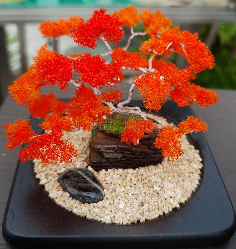 Bonsai stockfoto
