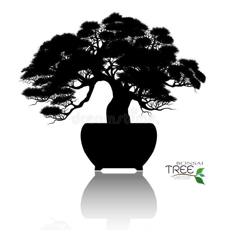 Bonsai drzewo, Wektorowa ilustracja zdjęcia stock