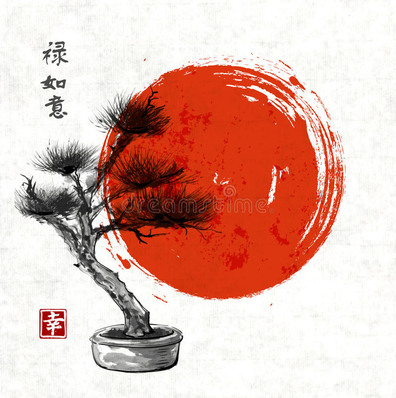 Bonsai pine tree hand drawn with ink royalty free illustration