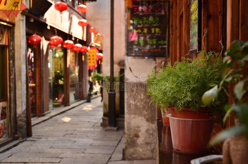 The bonsai plants placed outside a bar at the Shantang Street Suzhou,China. royalty free stock images