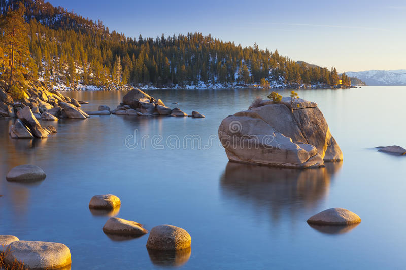Bonsai Rock Afternoon Light royalty free stock images