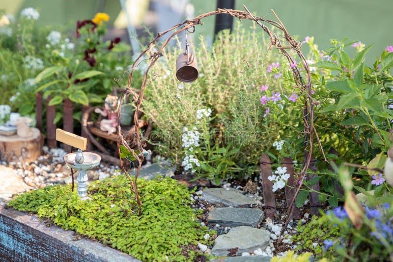 Bonsai sceny mini ogrodowy plantatorski ustawianie w ogródzie obraz royalty free