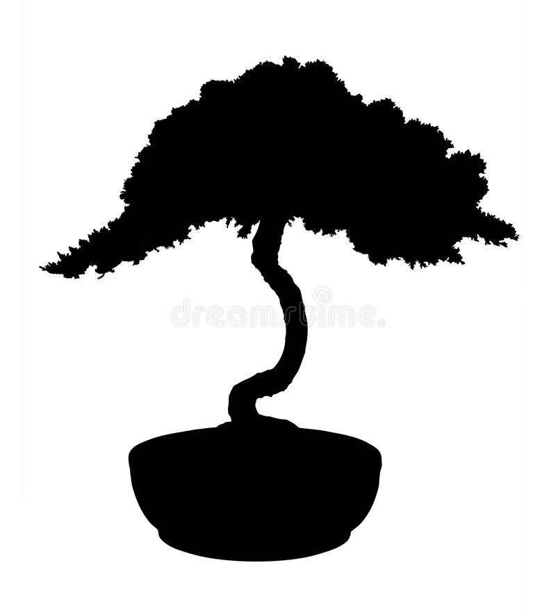 Bonsai Silhouette stock image