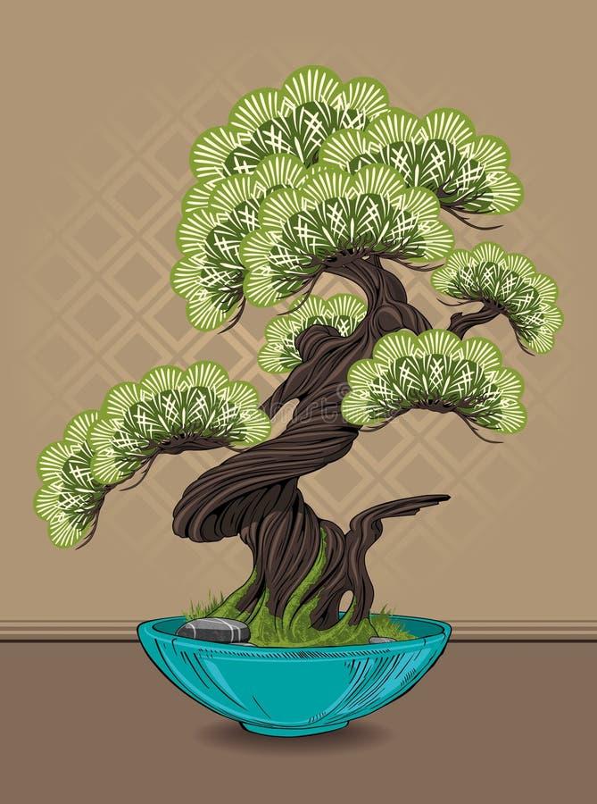 bonsai sosna wiecznozielona miniaturowa royalty ilustracja