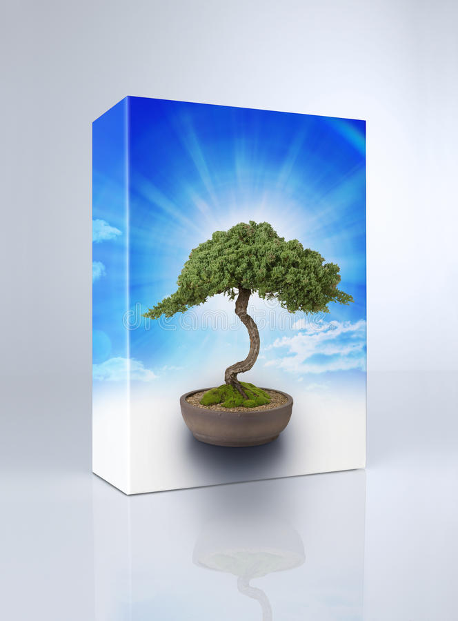 Bonsai Tree Product Box royalty free stock photo