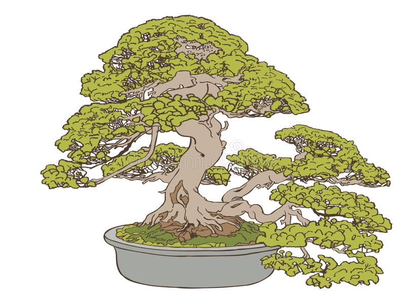 Bonsai tree Vector, Eps, Logo, Icon, Silhouette Illustration by crafteroks for different uses. Visit my website at https://crafter vector illustration