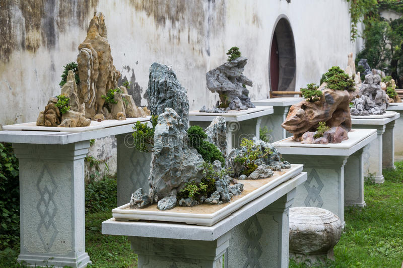 Bonsai trees in Classical garden in Suzhou, China royalty free stock photography