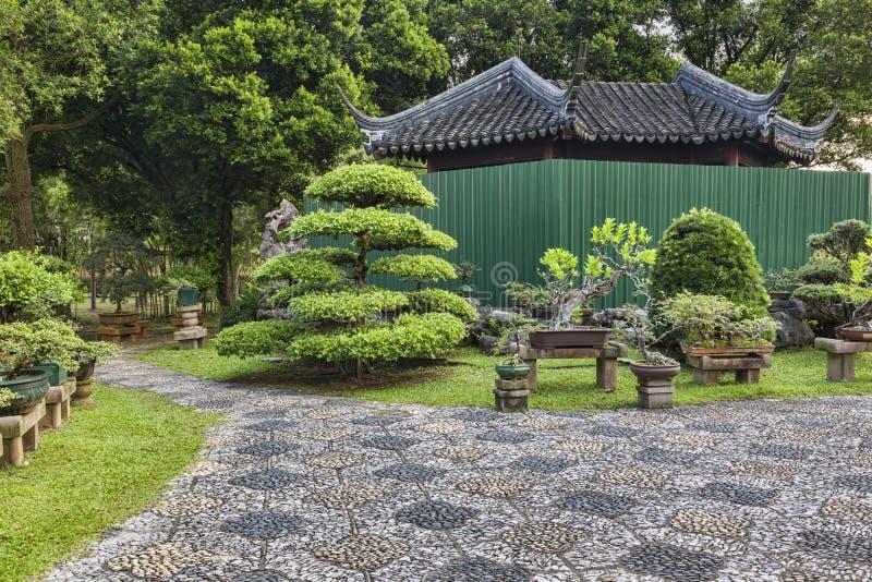 Bonsai Trees Singapore. Bonsai trees in Singapore Chinese Garden, Asia stock photo