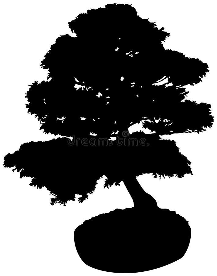 Bonsais-Baum-Schattenbild lizenzfreie abbildung