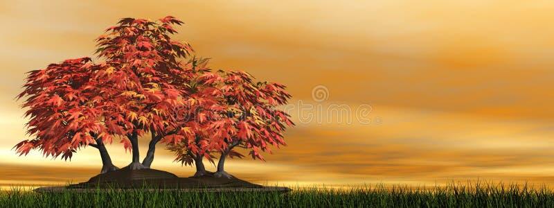 Bonsais da árvore de bordo japonês - 3D rendem ilustração royalty free