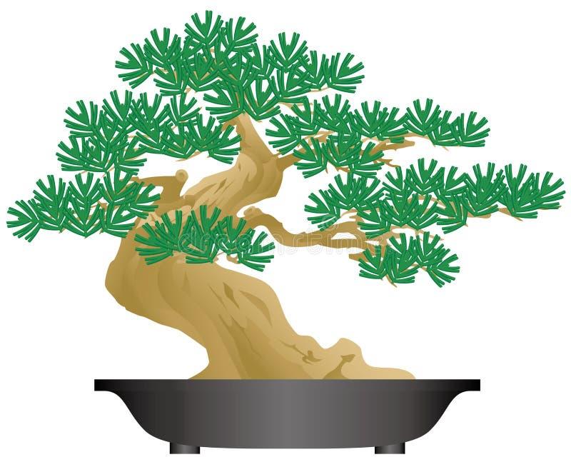 Bonsais Planta Potted ilustración del vector