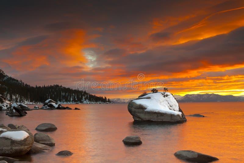 Bonsaisolnedgång Tahoe arkivbilder