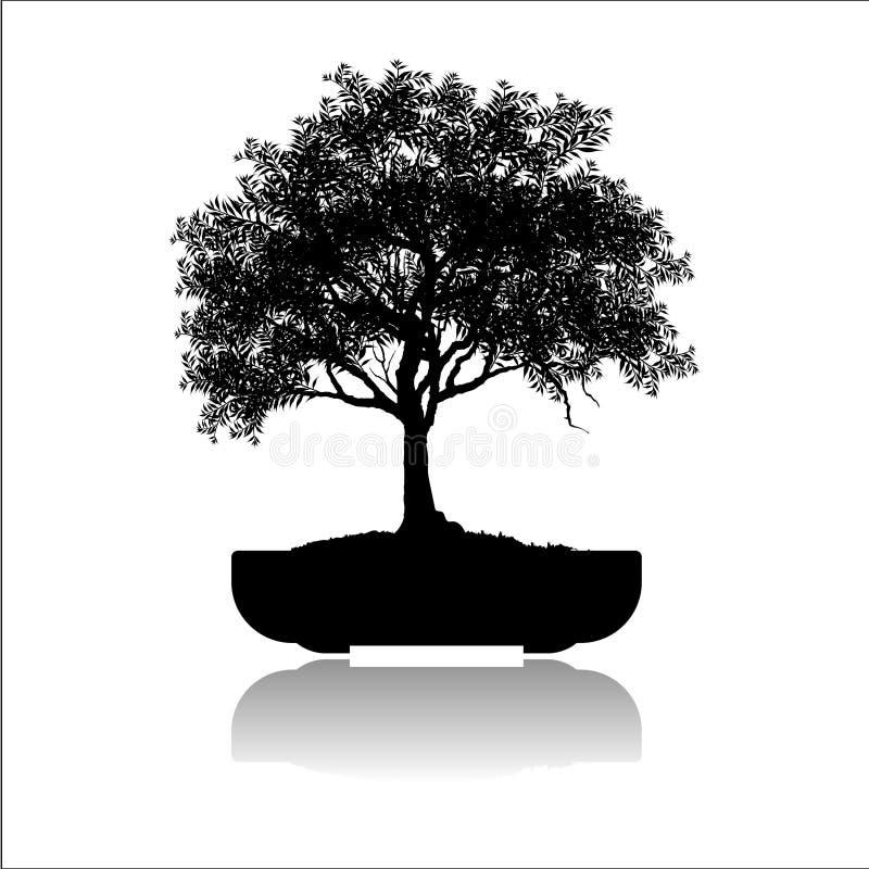 Bonsaiträd, svart kontur av bonsai, specificerad bild, vektorillustration, vektor illustrationer