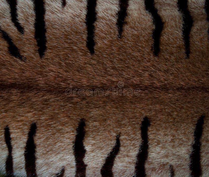 Bont van een mink royalty-vrije stock afbeeldingen