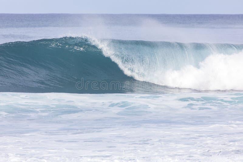 Banzai Pipeline wave royalty free stock photo
