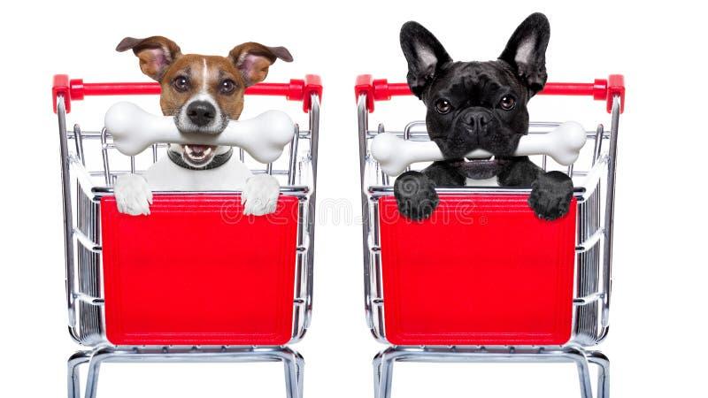 Boodschappenwagentjehonden royalty-vrije stock foto