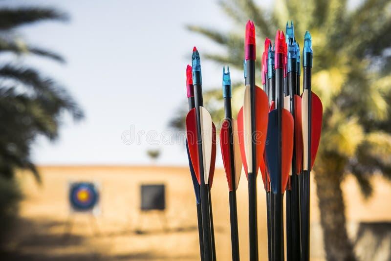 Boog en pijlen Het schieten in de woestijn stock fotografie