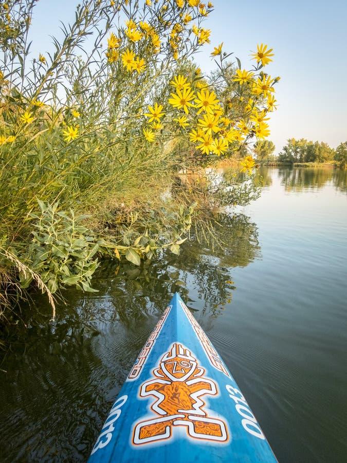 Boog van omhoog het rennen van tribune paddleboard door Stuurboord royalty-vrije stock afbeelding