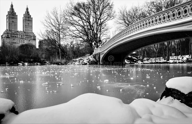 Boogbrug in de winter royalty-vrije stock fotografie