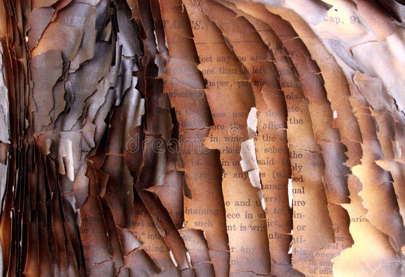 book burned στοκ εικόνα με δικαίωμα ελεύθερης χρήσης