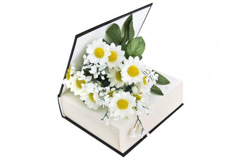 Book and daisy stock photos